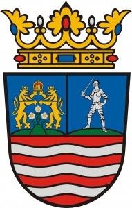 szórólapterjesztés Győr-Moson-Sopron megye